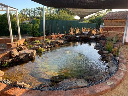 Custom Built Pond by WA Reticulation Supplies