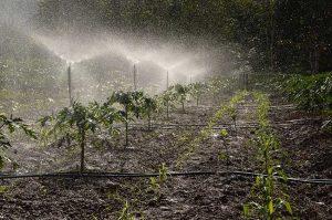 Farming Reticulation