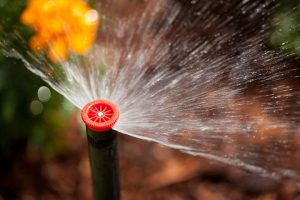 Sprinklers - Photos by Hunter