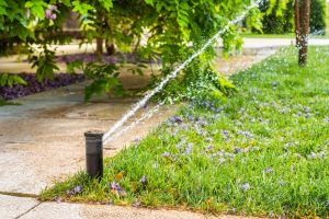 Automatic sprinklers for watering grass
